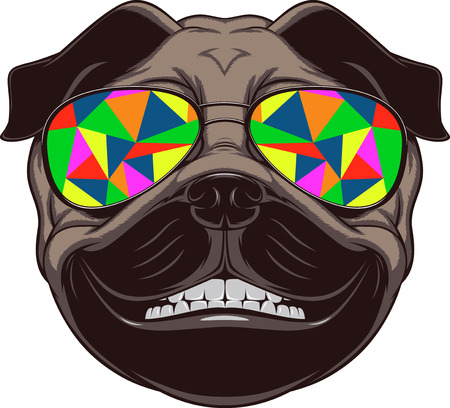 Illustrazione per Vector illustration of funny pug smiling on a white background - Immagini Royalty Free