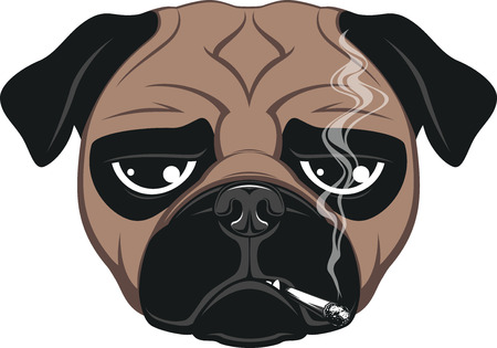 Illustration pour Vector illustration of funny dog smoking a cigarette - image libre de droit