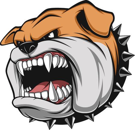 Ilustración de Vector illustration Angry bulldog mascot head, on a white background - Imagen libre de derechos