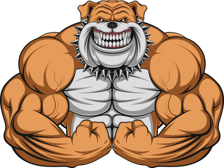 Illustration pour Vector illustration of a strong  bulldog with big biceps - image libre de droit