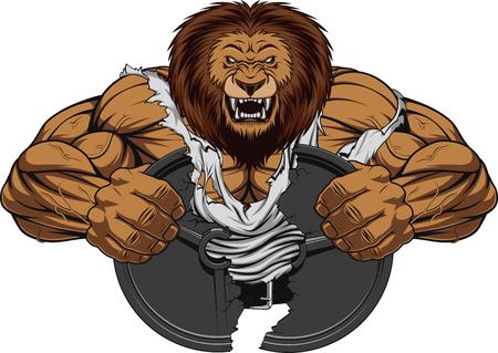 Ilustración de Vector illustration of a fierce strong lion bodybuilder breaks iron, over white background - Imagen libre de derechos