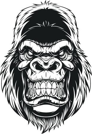 Illustrazione per Vector illustration, ferocious gorilla head on white background - Immagini Royalty Free