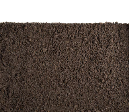 Photo for Soil or dirt section isolated on white background - Royalty Free Image