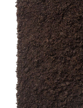 Photo for vertical soil or dirt section isolated on white background - Royalty Free Image