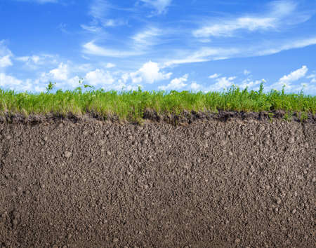 Photo for Soil ground, grass and sky nature background - Royalty Free Image