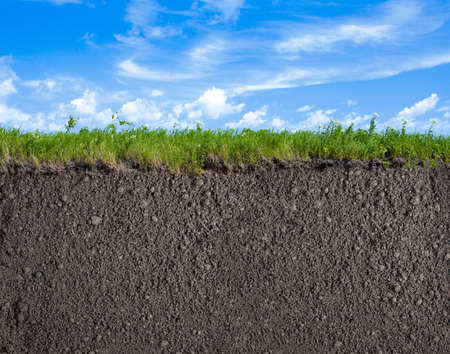 Photo for Soil or ground, grass and sky natural background - Royalty Free Image