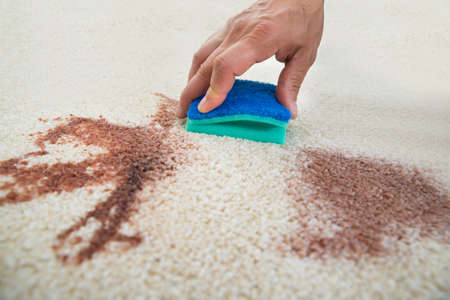 Photo pour Cropped image of man cleaning stain on carpet with sponge - image libre de droit