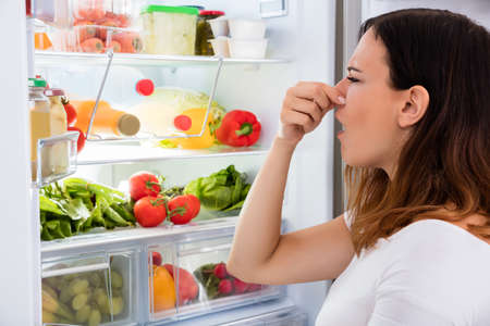 Foto de Young Woman Noticed Smell Coming Out Of Refrigerator - Imagen libre de derechos