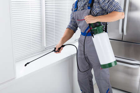Foto de Midsection Of Worker Spraying Insecticide On Windowsill With Sprayer In Kitchen - Imagen libre de derechos