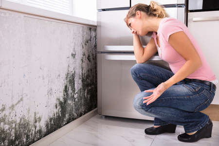 Photo for Close-up Of A Shocked Woman Looking At Mold On Wall - Royalty Free Image