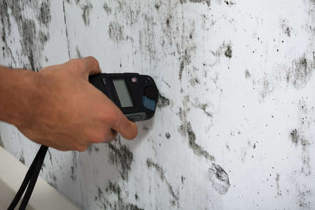 Photo for Close-up Of A Person's Hand Measuring Wetness Of Moldy Wall - Royalty Free Image