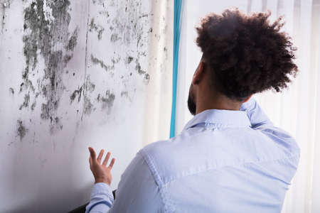 Photo pour Rear View Of A Young Man Looking At Mold On Wall - image libre de droit