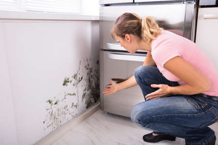 Photo pour Close-up Of A Shocked Woman Looking At Mold On Wall - image libre de droit