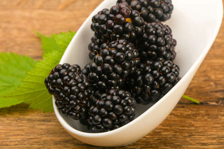 Photo for Blackberries with leaf - Royalty Free Image
