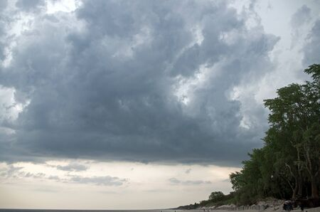 Foto de The coast of the restless dark blue sea and the trees on the sandy slope stretching into the horizon against the background of a pre thunderous gloomy sky with dark large heavy clouds - Imagen libre de derechos