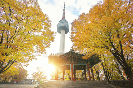 Photo for N seoul tower and chinese pavilion in autumn with morning sunrise, Seoul city, South Korea - Royalty Free Image