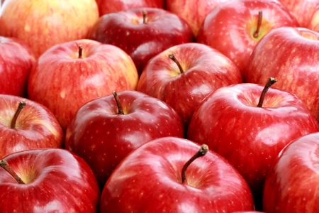 Photo for Lots of red ripe apple with drop - Royalty Free Image