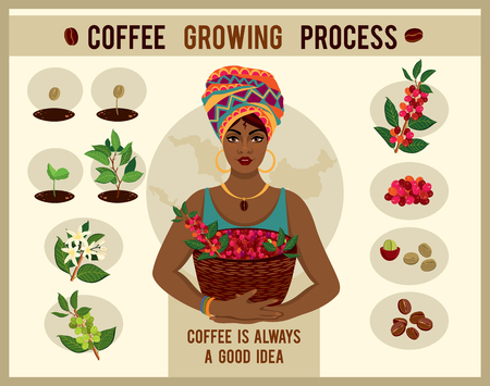 Illustration for African woman is a coffee farmer with a basket of coffee berries on the farm. Woman in traditional African clothes. Process of planting and growing a coffee tree poster. Coffee growing process - Royalty Free Image