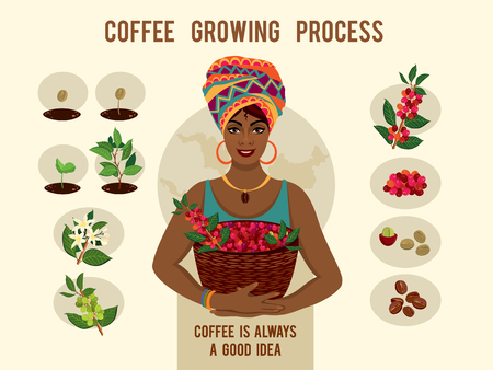 Illustration for Poster with process of planting and growing a coffee tree. Beautiful woman is a coffee farmer with a basket of coffee berries. - Royalty Free Image