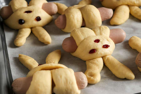 Photo pour Cooking buns in the shape of rabbits, step by step process, buns are laid out on a baking sheet before baking, Top view - image libre de droit
