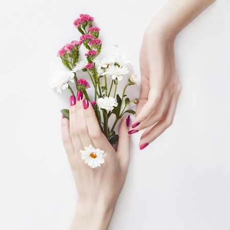 Photo pour Beautiful well-groomed hands with wild flowers on the table, anti-aging and anti-wrinkle cosmetics for hands. Skin care and beauty, skin hydration and Spa - image libre de droit