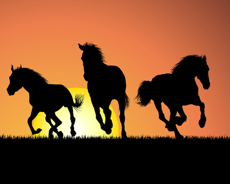 Horse silhouette on sunset background. Vector illustration.