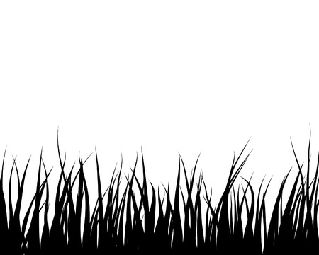 Vector grass silhouettes backgrounds for design use