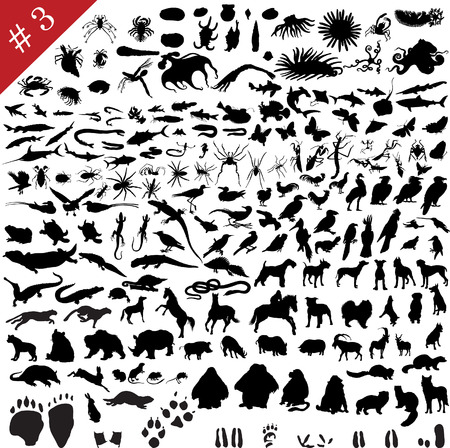 # 3 set of  different animals, birds, insects and fishes  vector silhouettes