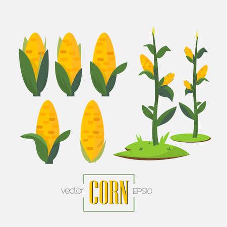 Illustration pour corns and corn tree - vector illustration - image libre de droit