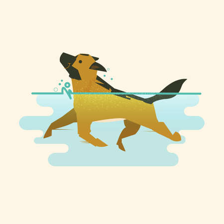 Illustration for Dog swimming in the water vector illustration - Royalty Free Image