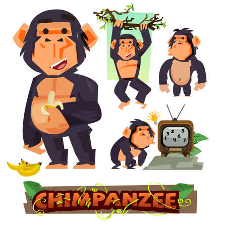 Illustration for Chimpanzee holding banana. character design set with typographic. clever. apes concept - vector illustration - Royalty Free Image