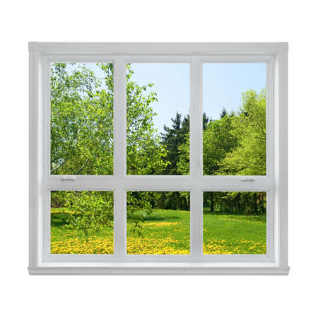 Photo for Spring dandelion lawn and green trees seen through the window  - Royalty Free Image
