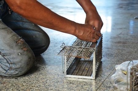 Foto de Old man use Mackerel fish for rat trap - Imagen libre de derechos