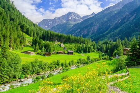 Photo pour Beautiful alpine landscape with green meadows, alpine cottages and mountain peaks, Zillertal Alps, Austria - image libre de droit