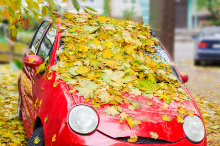 Small red car, sprinkled with fallen leaves of maple autumn