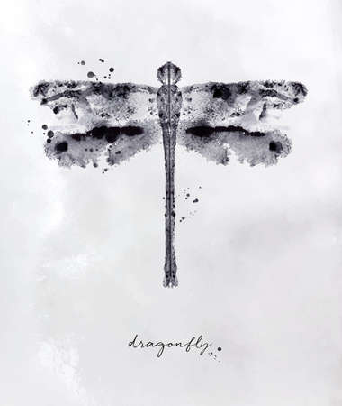 Illustration pour Monotype dragonfly drawing with black and white on paper background - image libre de droit