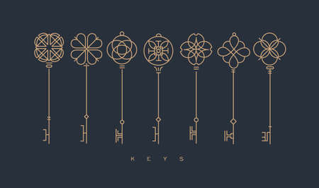 Illustration for Set of key collection in modern line style drawing on gray background. - Royalty Free Image