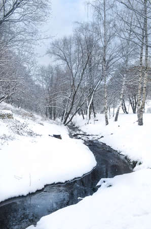 Photo for A Snow Covered Stream In The Forest - Royalty Free Image