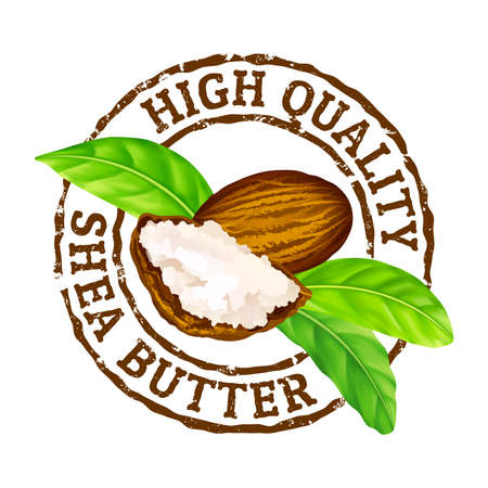 Illustration for Vector grunge rubber stamp High quality shea butter on a white. Shea nuts, butter and green leaves stamp icon. - Royalty Free Image