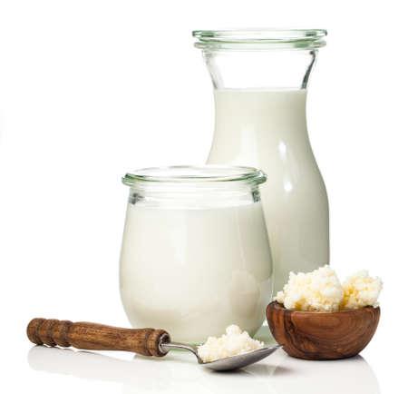 Photo pour Milk kefir grains. milk kefir, or búlgaros, is a fermented milk drink that originated in the Caucasus Mountains made with kefir grains, a yeastbacterial fermentation starter. - image libre de droit