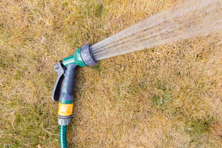 Photo for Close up of a hosepipe on a parched grass background - Royalty Free Image