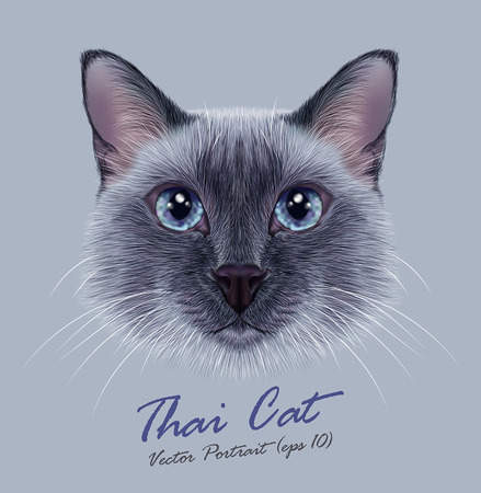 Illustration for Vector Illustrative Portrait of a Thai Cat. Cute blue point Traditional Siamese Cat. - Royalty Free Image