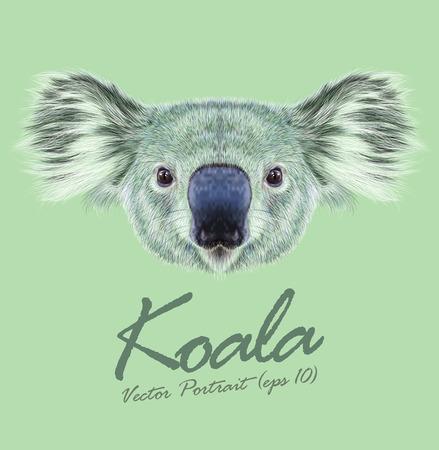 Illustration pour Vector Illustrative Portrait of Koala Bear. Cute fluffy face of Australian marsupial bear. - image libre de droit
