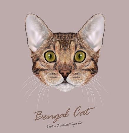 Ilustración de Cute face of Brown-spotted Domestic cat with blue eyes - Imagen libre de derechos