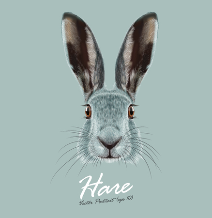 Illustration pour Cute Face of Wild Hare on blue background - image libre de droit