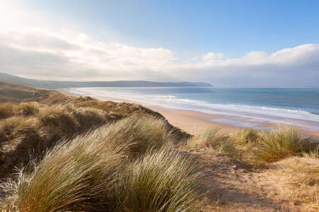 Photo pour Windswept grass on the sand dunes above Woolacombe beach in North Devon, England - image libre de droit