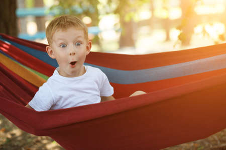 Photo for Cheerful little boy in hammock amazedly looking in a pine forest, delight emotion - Royalty Free Image