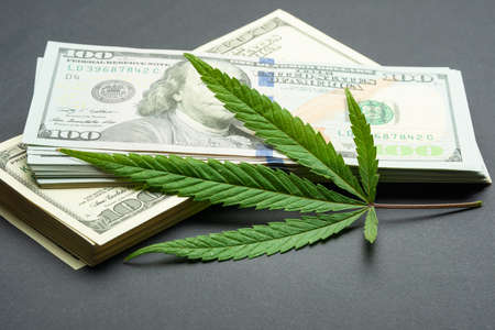 Foto de Black market of drugs trade, dollars and cannabis concept photo - Imagen libre de derechos