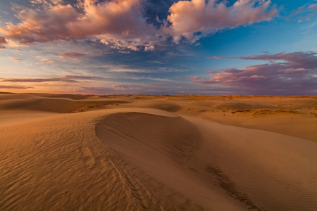Foto per Beautiful views of the Gobi desert. Mongolia. - Immagine Royalty Free