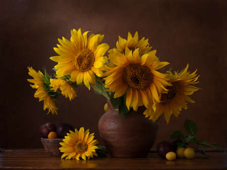 Photo pour Bouquet of sunflowers in old clay jug.  In the foreground branches with ripe cherry plum - image libre de droit